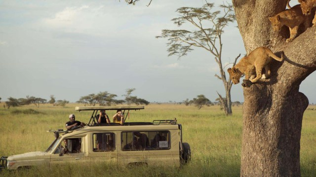 Tanzania holiday tours and safaris,
