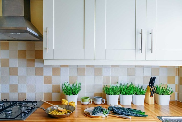 Kitchen With Herb And Plant
