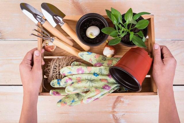 essential gardening tools.