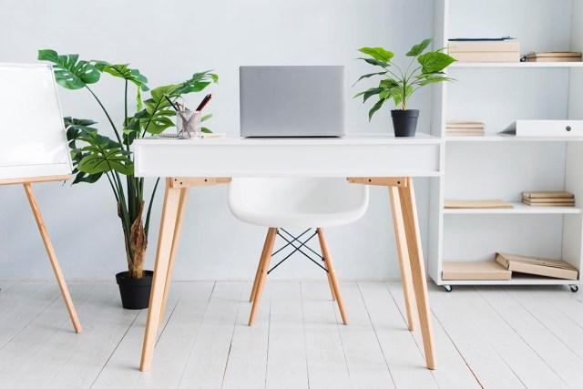 ultimate home office setup.