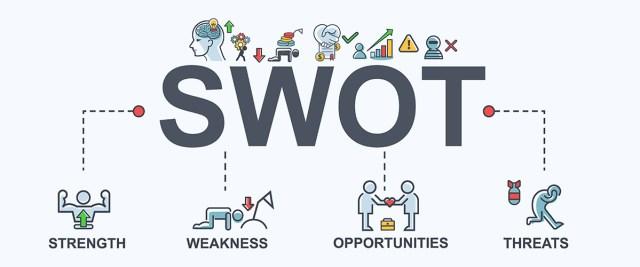 Execute a SWOT Analysis