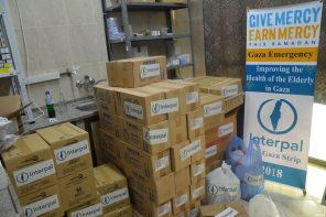 Interpal's aid to Palestinians in need