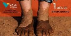 25 de fevereiro: Um mês de crime da Vale em Brumadinho