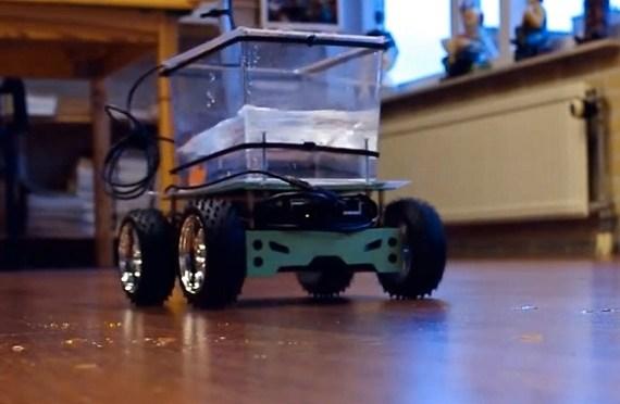 Fish on Wheels, un curioso gadget que permitirá salir a tu pez de paseo