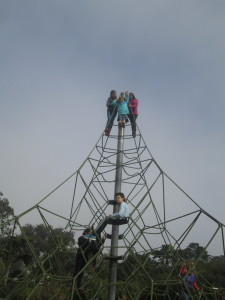 Climbing cell phone towers