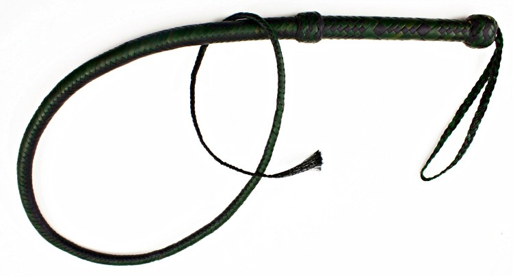 The whip used by Ms. Sapphire. It was left on the boat and was submitted to the International Record Fish Assn. along with the record application.