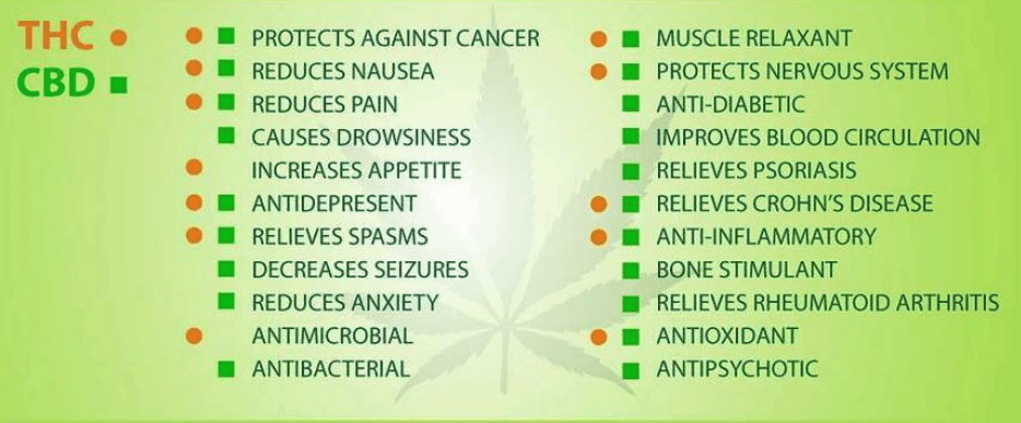 Benifits of THC and CBD