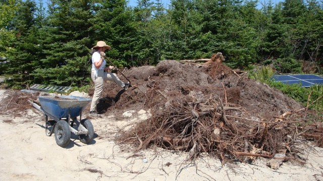 Johanna Recovering Topsoil from the House Site