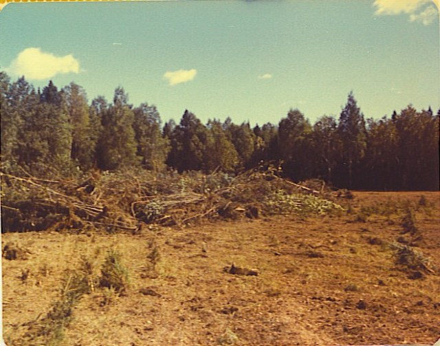 Piled Up Brush and Topsoil in Maine