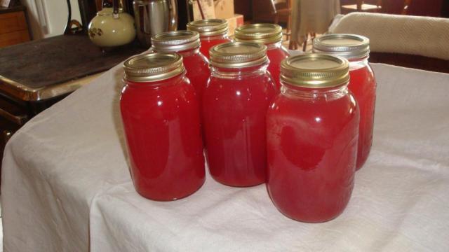 Seven Quarts Rhubarb Juice