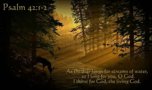 psalm 42 1-2, psalm 42, as a deer pants, thirst for god, hunger for god, desire for god, desiring god