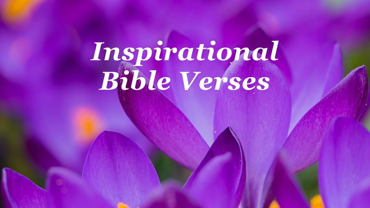 Inspirational Bible Verses & Quotes