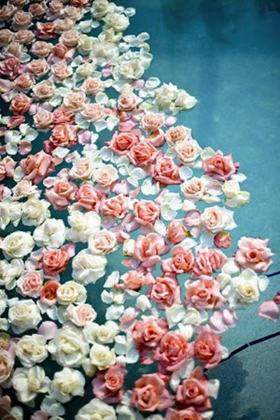 Floating Flowers Ponds