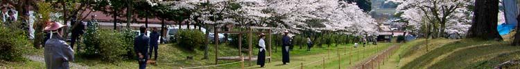 The yabusame course at Washibara Hachiman-gu shrine.