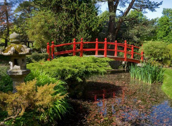 japanese gardens kildare ireland Japanese Gardens | Do | Attractions | Kildare Town