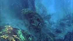 scogliera-sommersa2