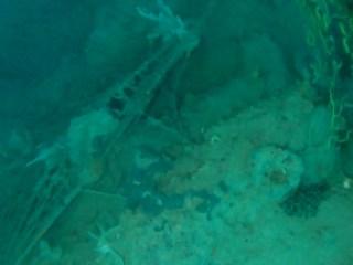 Le Reti Da Pesca Perse Sono Un Danno Ambientale - Lost Fishing Nets Are Un Environmentale Damage - Intotheblue.it