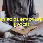 Aparentemente, existem 4 tipos de introversão - faça um teste e descubra qual é a sua