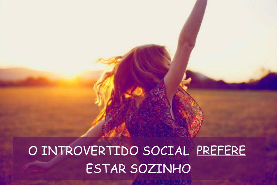 Tipos de Introversão - Introvertido Social