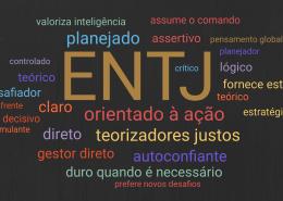 Uma visão geral do tipo de personalidade ENTJ