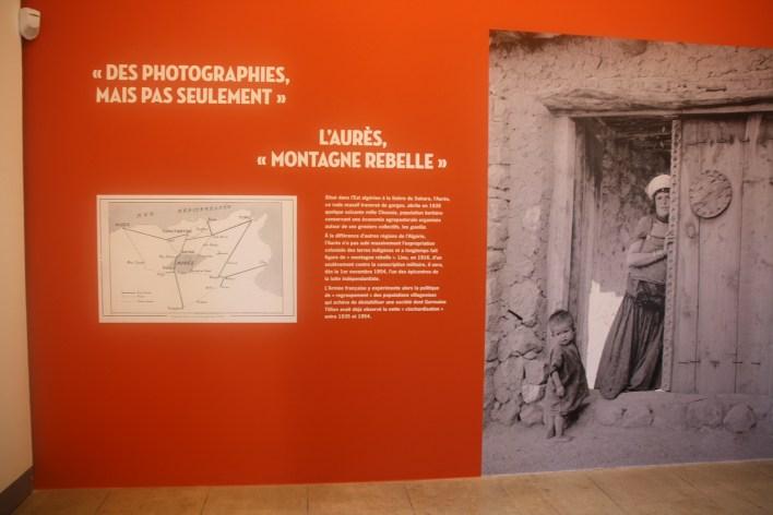 صور من المعرض