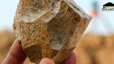صورة الجزائر مهد البشرية : إكتشاف ثاني أقدم تواجد بشري في العالم بنواحي سطيف