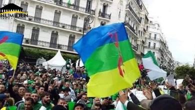 Photo de Drapeau Amazigh :  symbole d'unité, de résistance et de lutte
