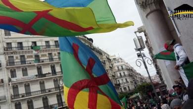 Photo de Drapeau Amazigh : Deux manifestants libérés à Chlef