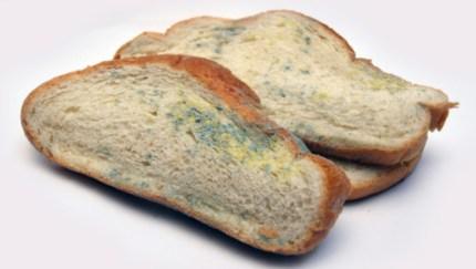 Come verificare, nella nostra casa, se il pane che mangiamo contiene o no micotossine