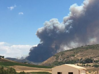 Incredibile ma vero: brucia anche il secolare bosco di querce da sughero Angimbé!