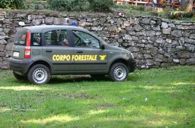 Personale dei Parchi siciliani 'comandato' presso il Corpo Forestale: qualche precisazione
