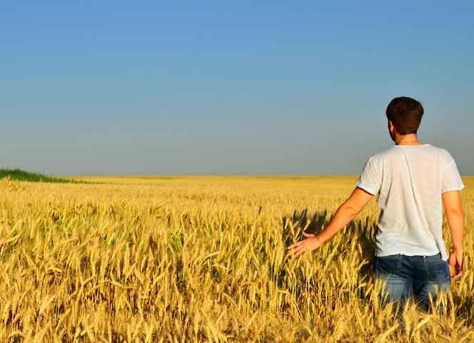 I giovani riscoprono l'agricoltura? E' una balla! Al contrario, è in atto una fuga da campi!