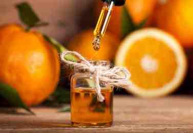 Limonene 2/ Olio di arancia per combattere la Xylella, ma anche i parassiti di melo e pero