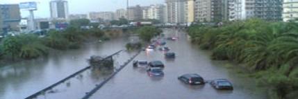 """""""La pioggia nel Palermeto"""": ode alla 'Città mediorientale incrastata nell'Europa'"""