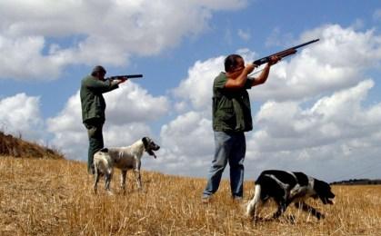 Il TAR blocca la caccia in Sicilia fino all'1 ottobre