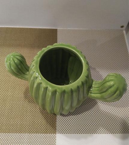 Foto 3 - Maceta cactus, vista superior