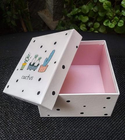 Foto 2 - Caja con diseño cactus, abierta, vista frontal
