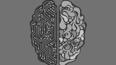 half machine half human brain 2