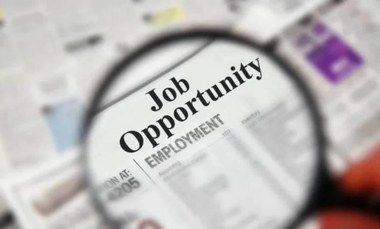 employment 1200