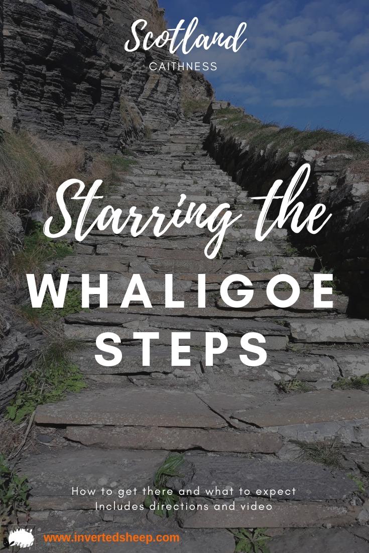 Whaligoe Steps - Inverted Sheep - pin1