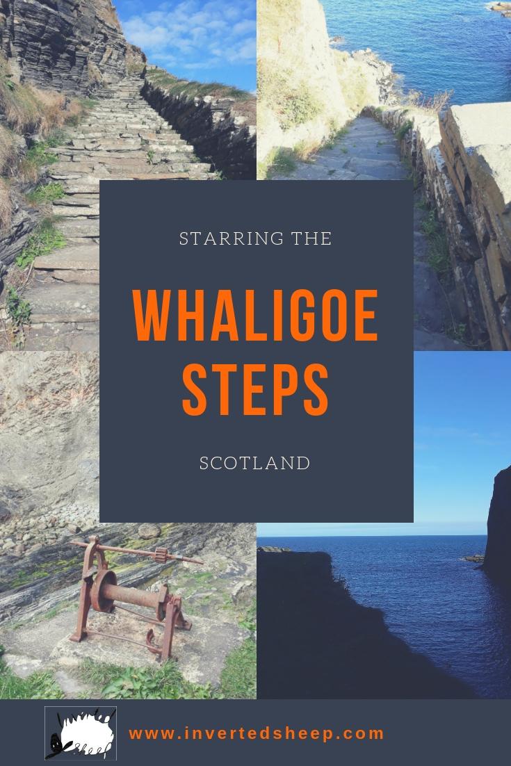 Whaligoe Steps - Inverted Sheep - pin3