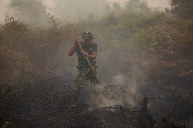 Haze Chokes Indonesia Business and Economy