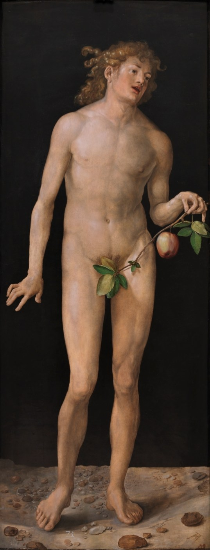 Alberto Durero: Adán. Madrid, Museo Nacional del Prado.
