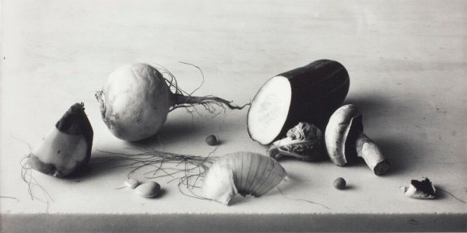 Irving Penn: Naturaleza muerta