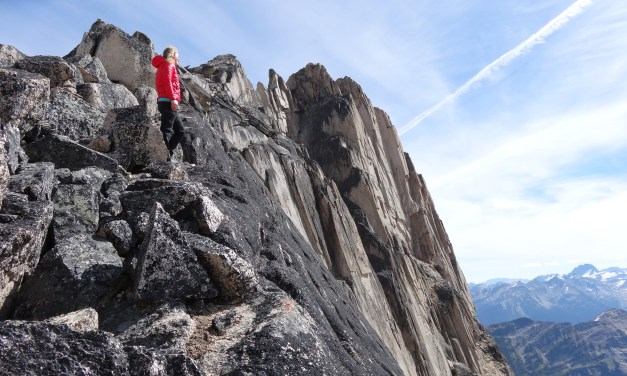 Musings from a Granite Playground