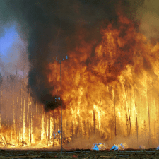 Northwest Crown Fire Experiment, Northwest Territories, Canada - offshore investing