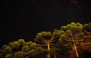 Campos do Jordão, Brazil - night sky - tax haven