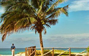 Cuban beach - Day trading