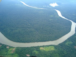 Brazil rainforest as an offshore investment