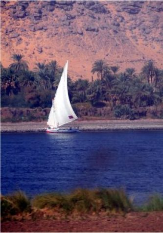 Dhow traversing the Nile near Aswan - Investment account